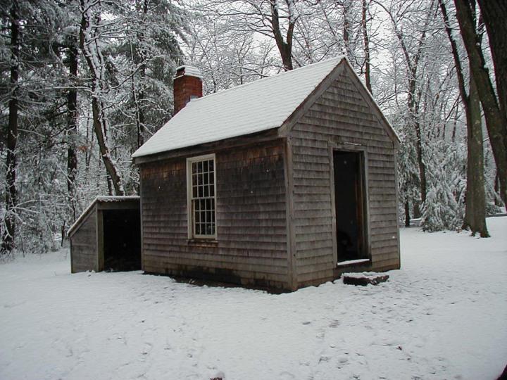 walden-cabin