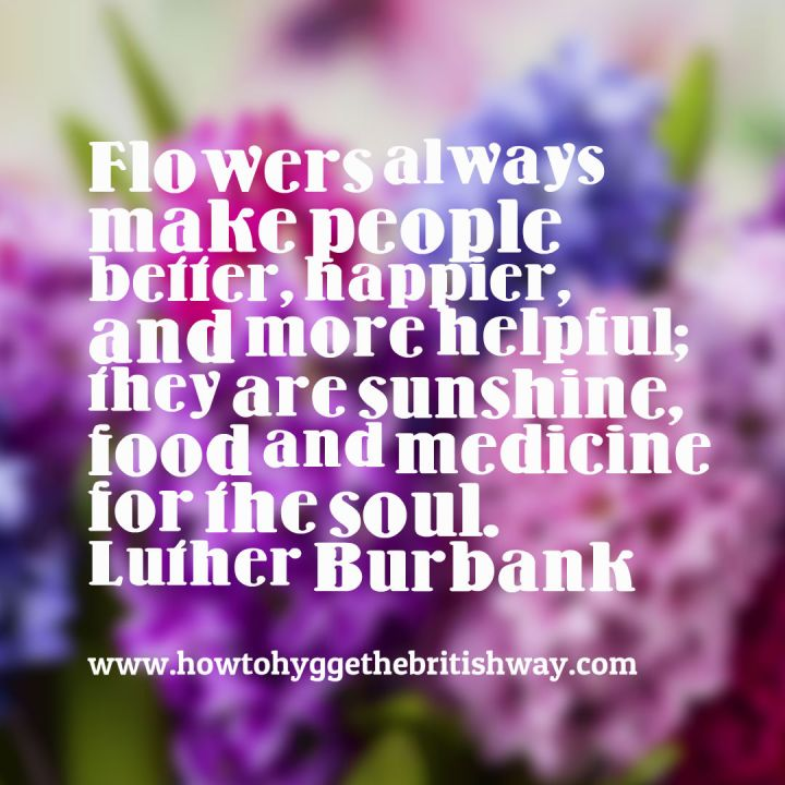 Flowers are food for the soul quote
