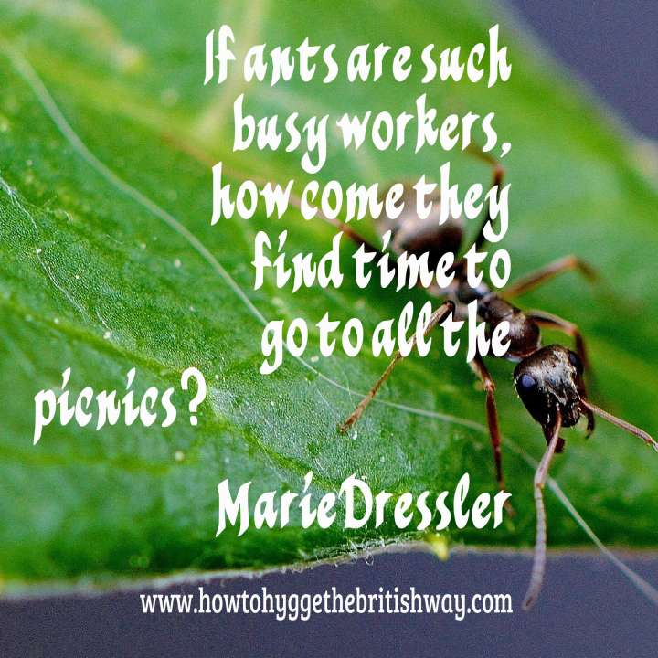 If ants are such busy workers.jpg