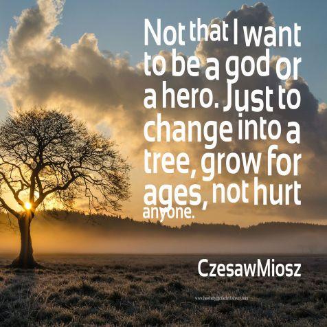Change into a Tree 1