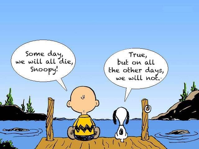 Charlie-Brown-and-Snoopy-cartoon-someday-we-die
