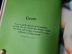 Thoreau quote Grounded